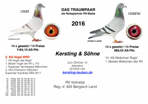 Das-Traumpaar